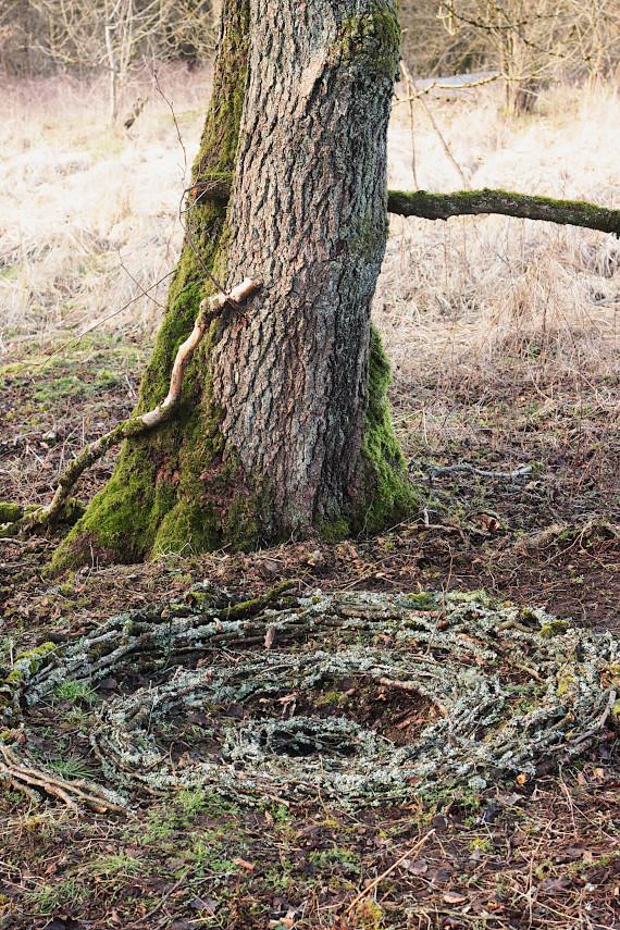 Landart Kunst Floristik Backhaus Ahornblatt design Gummersbach Natur Natürlichkeit Landschaftskunstskunst Natural-Sculptures Umweltkunst Zweige-Äste