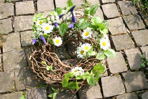 Korkenzieherhasel mit Wiesenblumen    Foto: Ahornblatt