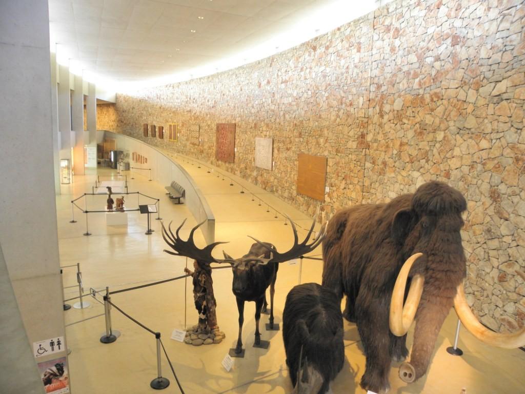 Musée de Quinson