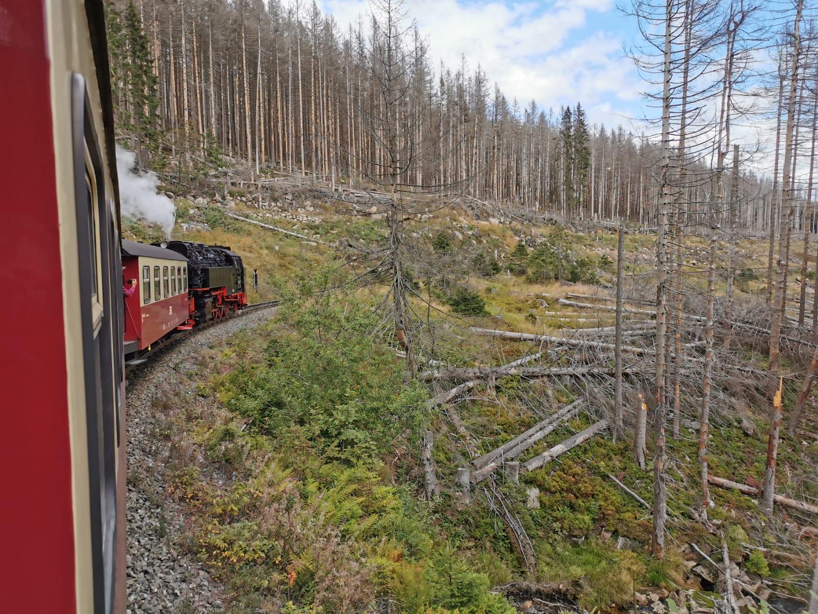 Harzer Schmalspurbahn vom Brocken nach Schierke