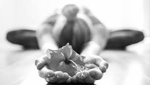 Yoga : Merci La Vie