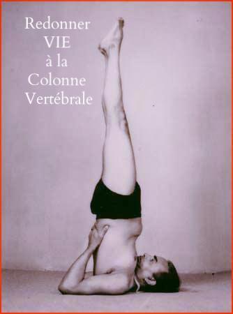 stage yoga redonner vie à la colonne vertebrale
