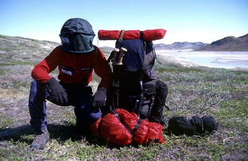 Reisefotograf-Juergen-Sedlmayr-Mücken/Grönland