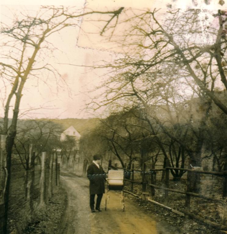 Der Blütenweg, jetzt Marienstraße in den sechziger Jahren