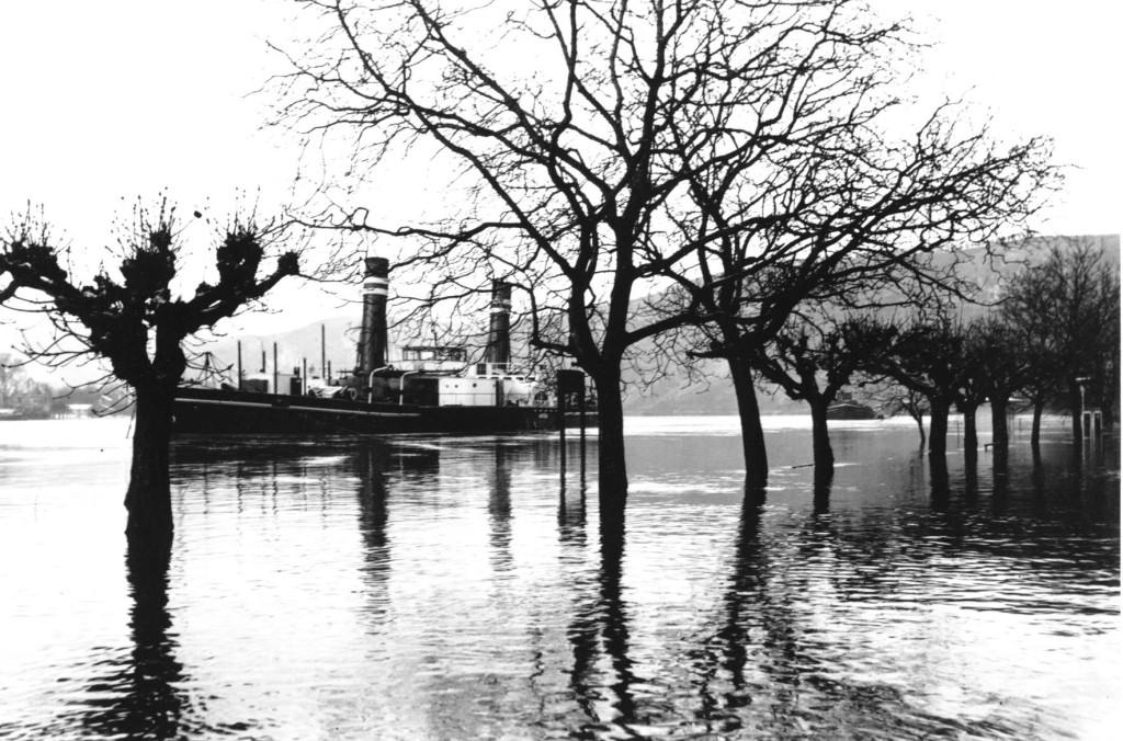 Hochwasser 1954 Dampfer Constantin II / Kapitän Johann Breitbach