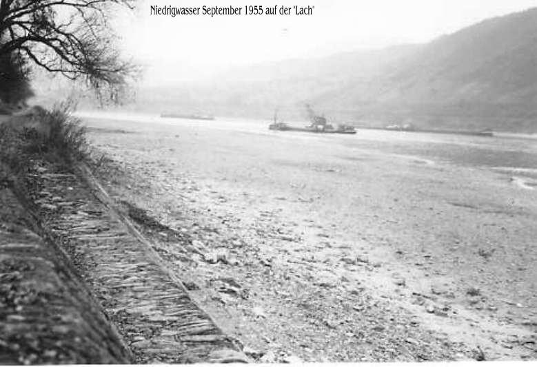 Niedrigwasser 1955