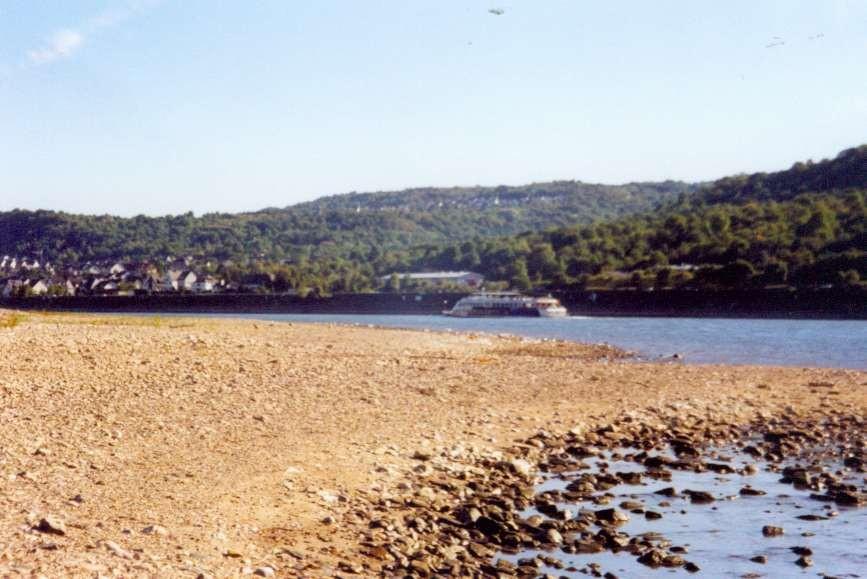 """2003 Niedrigwasser auf der """"Lach"""" (Rheinlache)"""