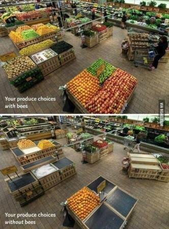 choix de nos produits avec et sans pollinisateurs