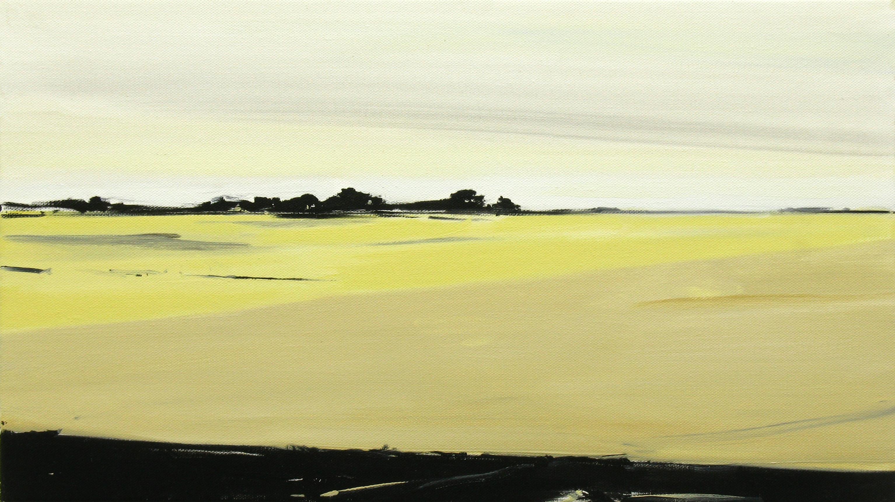 Matthieu van Riel. Schilderijen. Zonder titel 40x70cm olie op linnen 2012