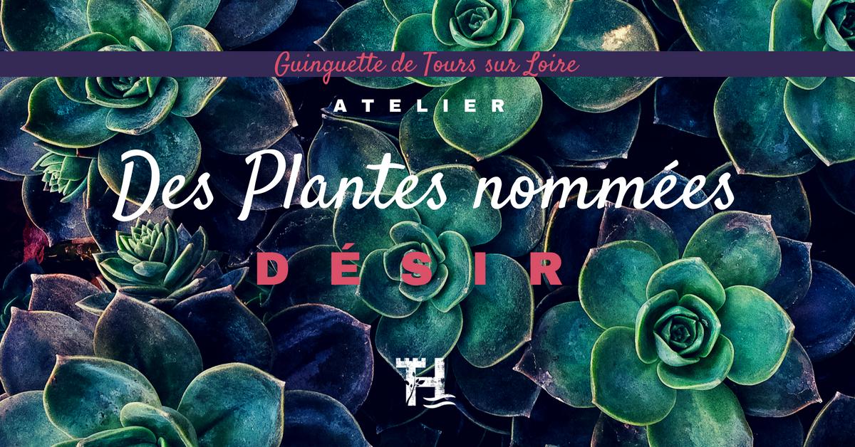 Touraine Terre d'Histoire - Val de Loire - atelier plantes aphrodisiaques - ethnobotaniques