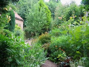 Garden of Dan