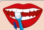Zähne optimal Putzen mit der elektrischen Zahnbürste, an dem Zahn entlang