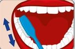 elektrische Zahnbürste im Einsatz, zähne putzen vorwärts und rückwärts