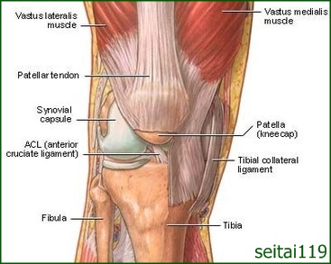 膝痛みを訴える人の約9割が変形性膝関節症です