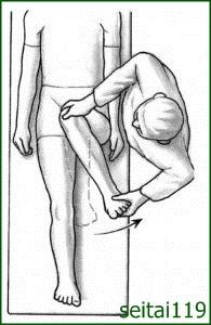 臼蓋及び臼蓋唇と大腿骨頭との内転時痛みを診る