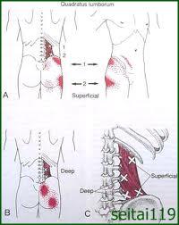腰痛症と脊柱管狭窄症