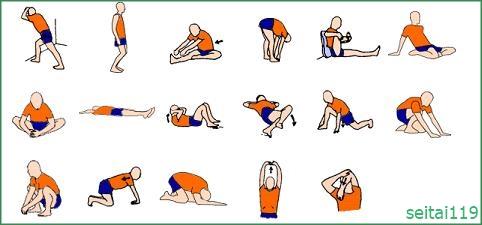 ストレッチは身体の筋肉調整です