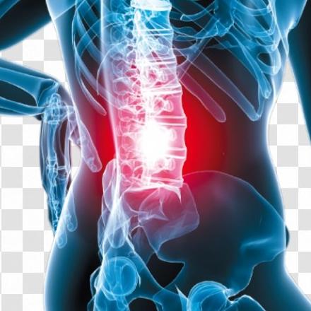 腰痛、足の症状別一覧