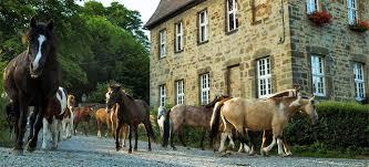 Gut Waitzrodt Innenhof mit Pferden
