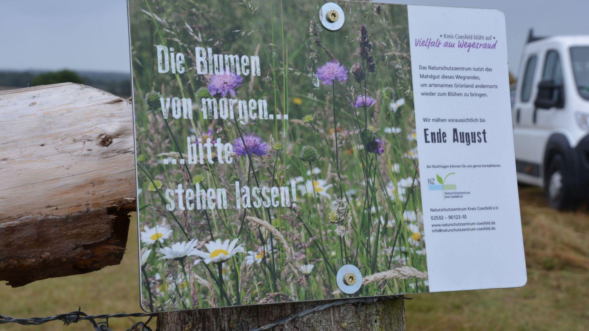 Bitte stehen lassen… Mit Schildern wie diesen erinnert das Naturschutzzentrum die Gemeinden daran, hier nicht zu mähen. Foto: wfc