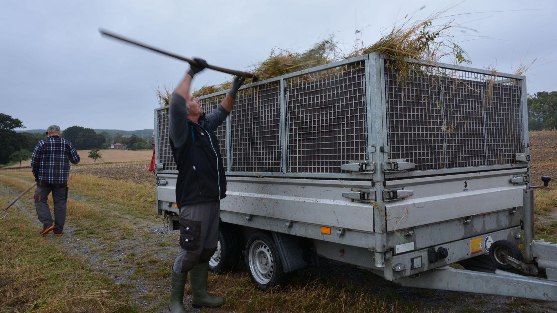 Eine ganze Hängerladung voll Mahdgut haben die Mitarbeiter der Einsatzgruppe Naturschutz an nur einem Weidensaum gemäht. Foto wfc