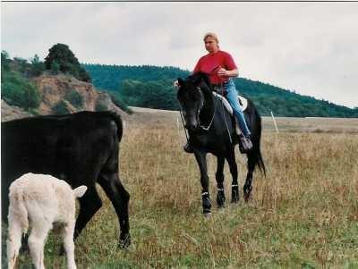 Cowhorse Damien