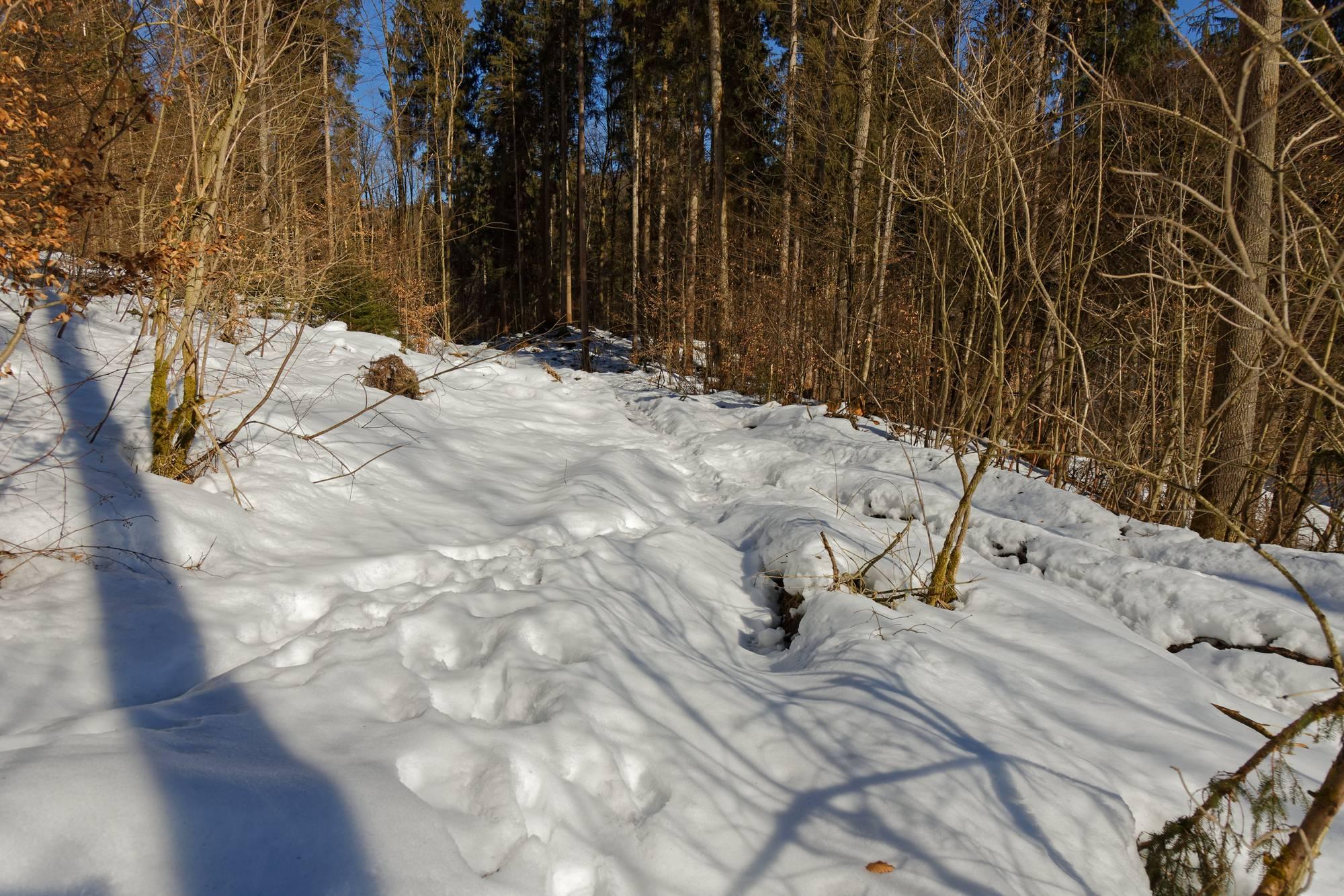 Wanderwege durch den Schnee