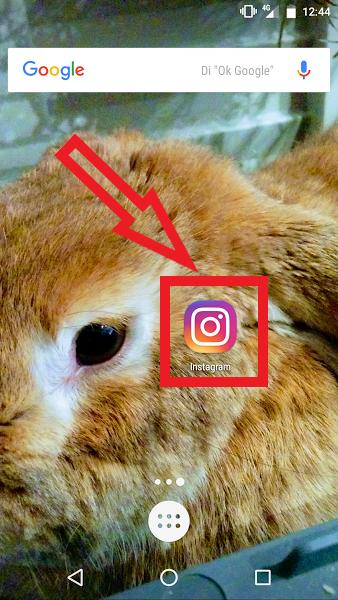 Borrar El Historial De Búsqueda De Instagram