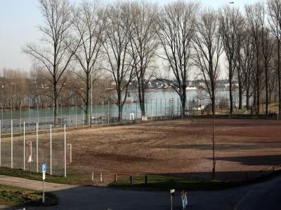Schöne Aussicht: Rund um das am Rhein gelegene Sportgelände soll gebaut werden. Foto: Wolfgang Henry