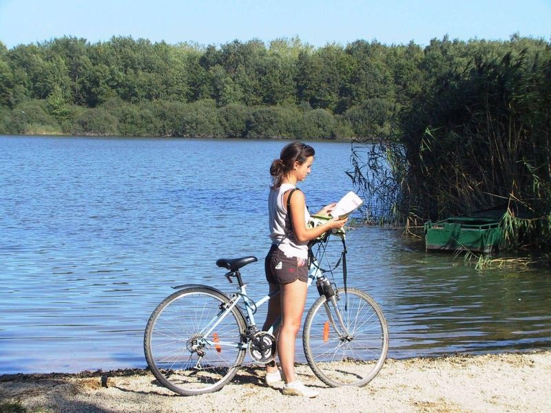 Le Lac du Der près de l'hôtel à Bure