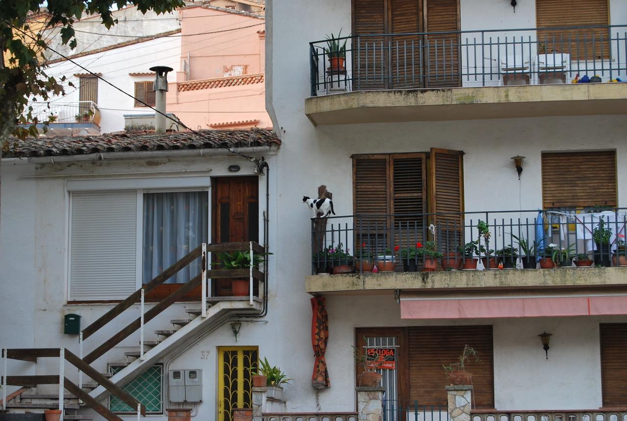 Eindrücke aus der Ortschaft Caldés de Estrac