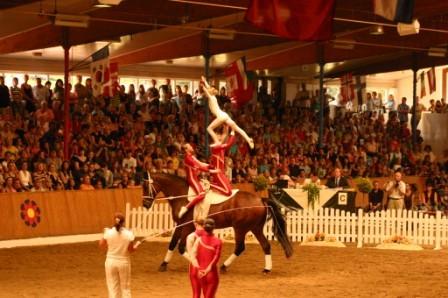 DM Vechta 2007