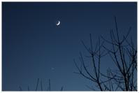 Venus, Mond