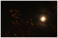Mars, Mond
