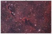 IC 1396, Elefantenrüssel-Nebel