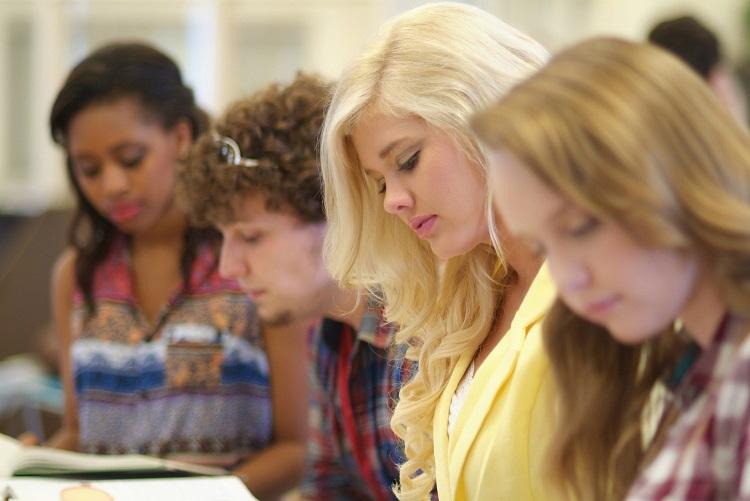 Bildungsreise www.brahmsee.de