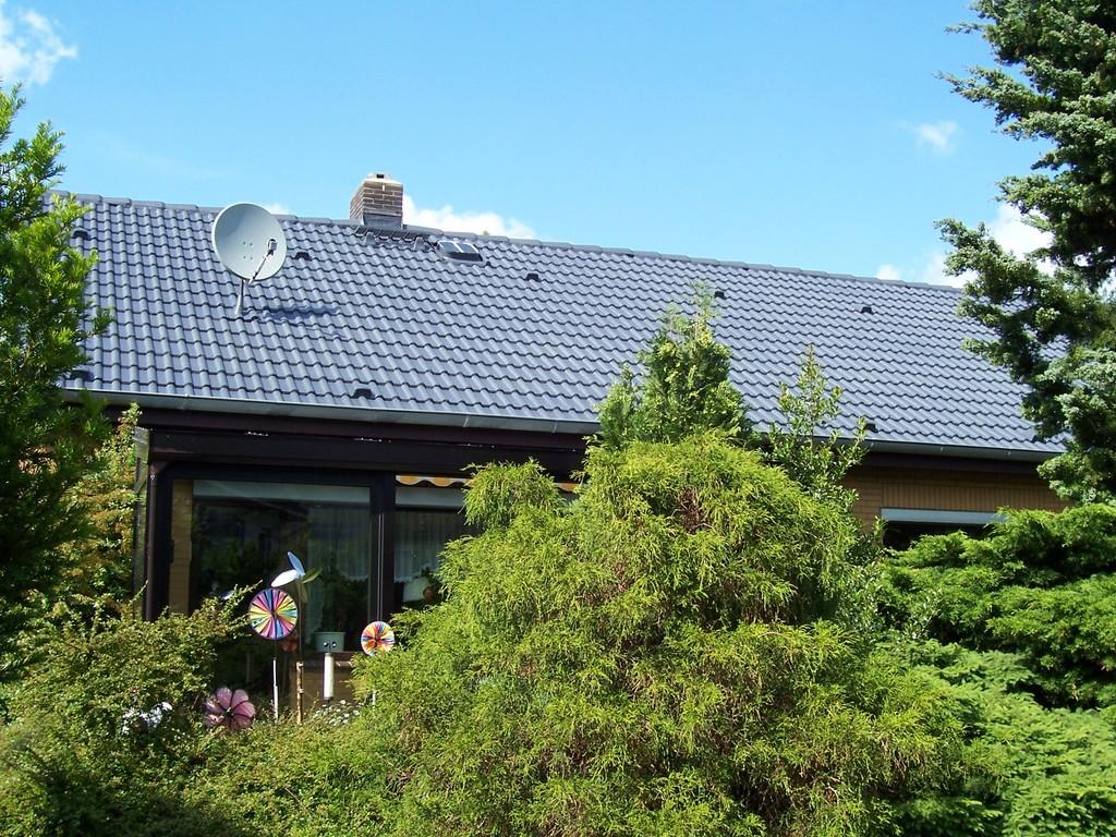 Dachreinigung Meisel Dachbeschichtung Flechtorf