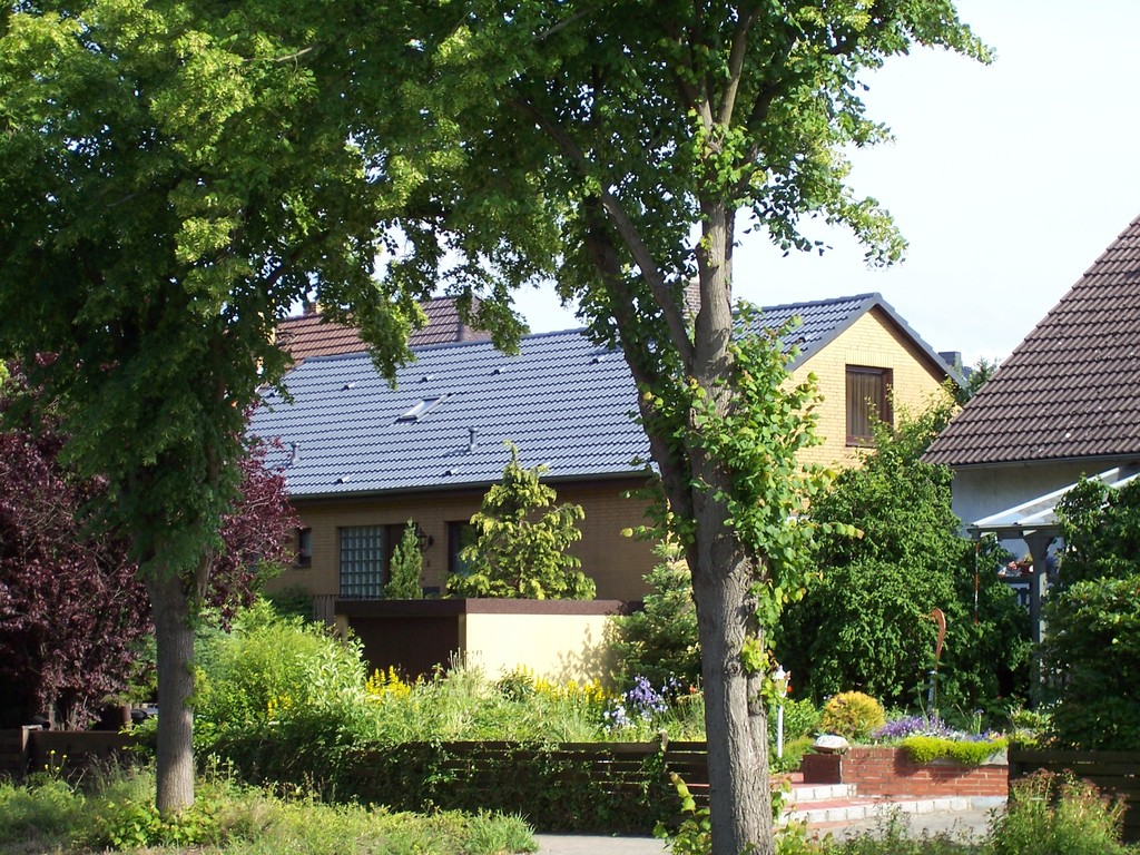 Meisel Dachbeschichtung Flechtorf
