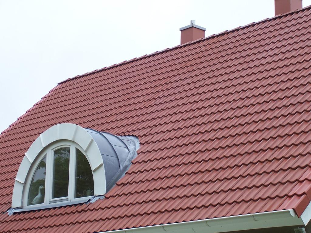 Dachreinigung Meisel Dachbeschichtung Hannover - Bothfeld