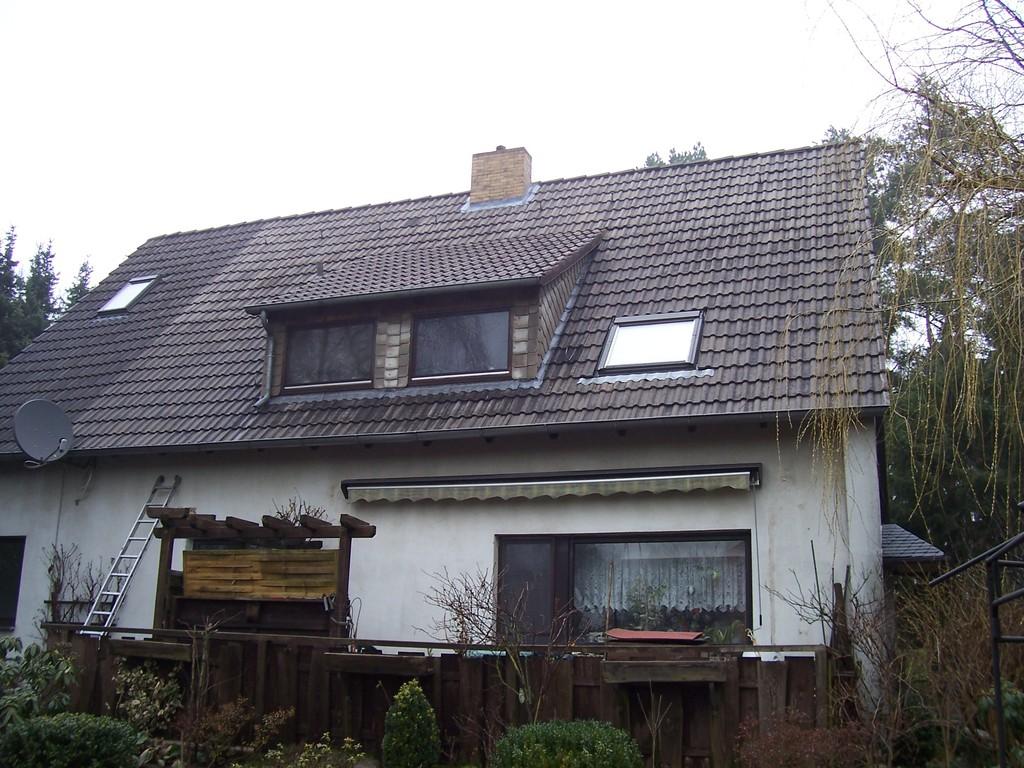 Dachreinigung Meisel Dachbeschichtung Harvesse