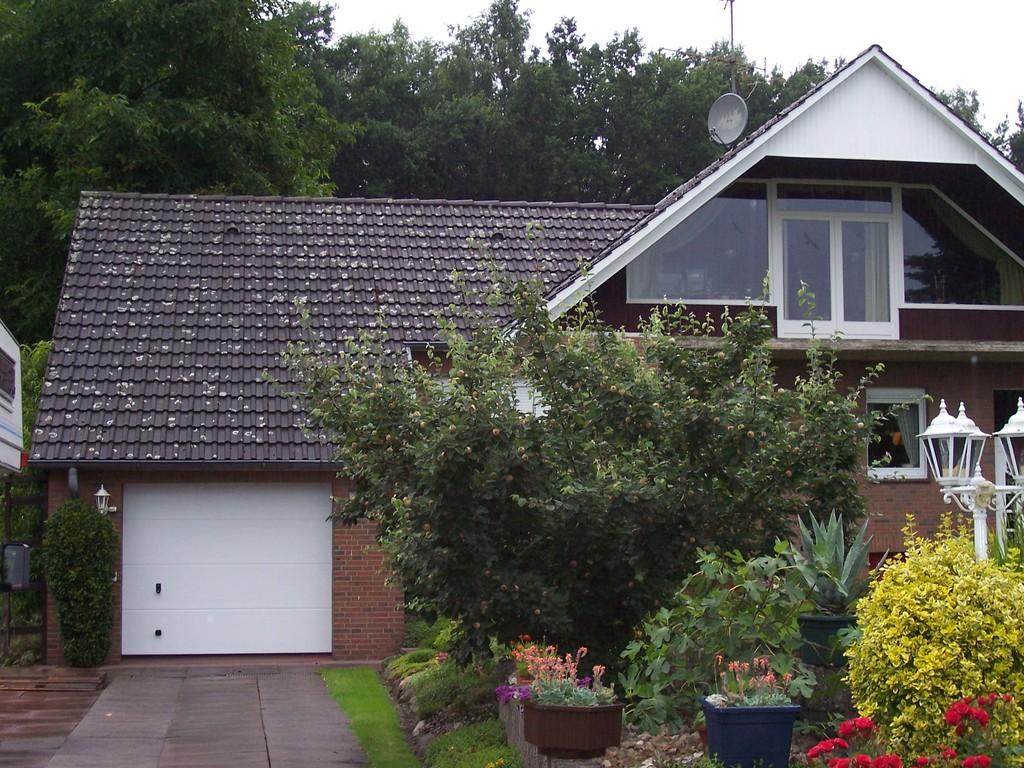 Dachreinigung Meisel Dachbeschichtung Dannenbüttel