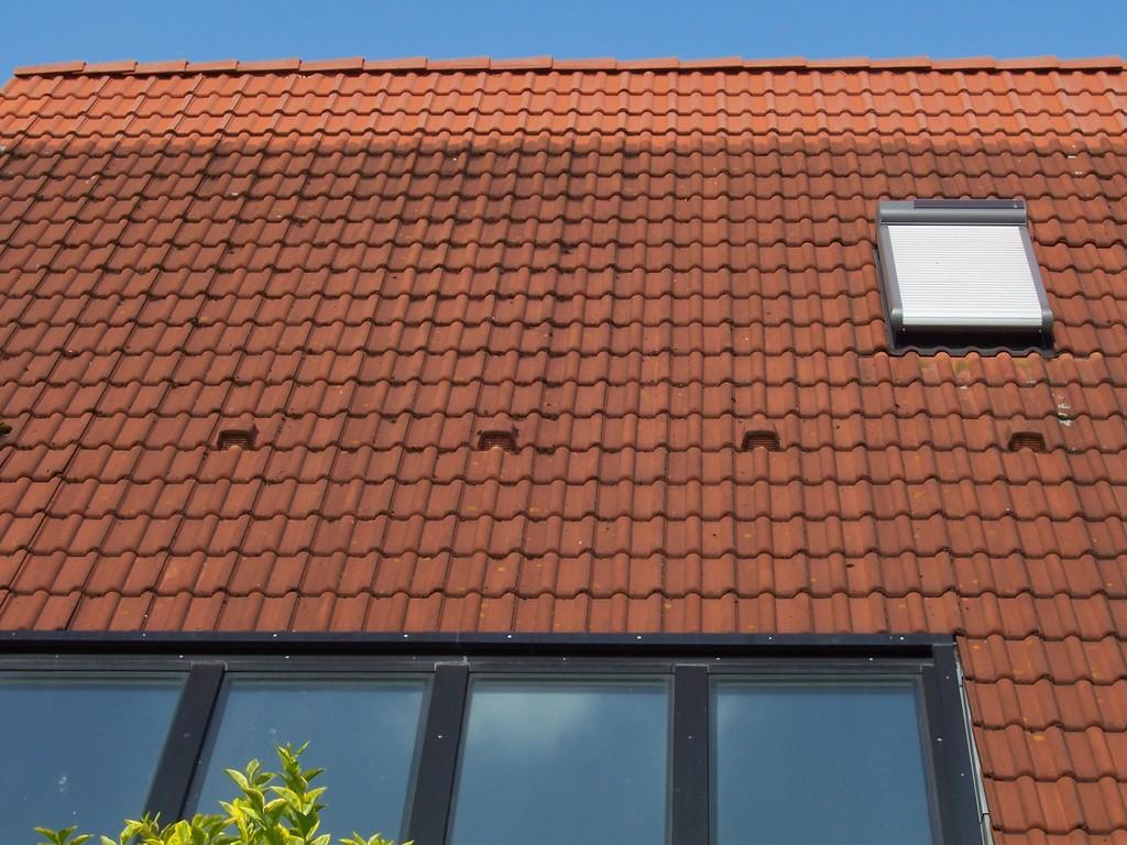 Dachreinigung Meisel Dachbeschichtung Leiferde