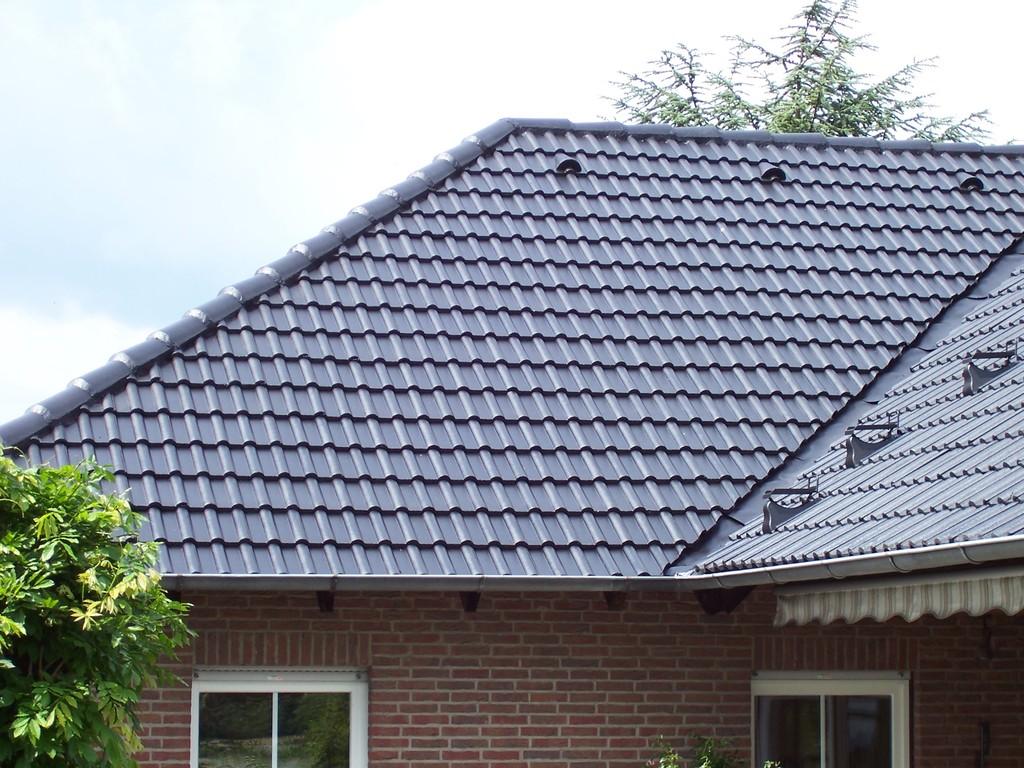 Dachreinigung Meisel Dachbeschichtung Wedelheine