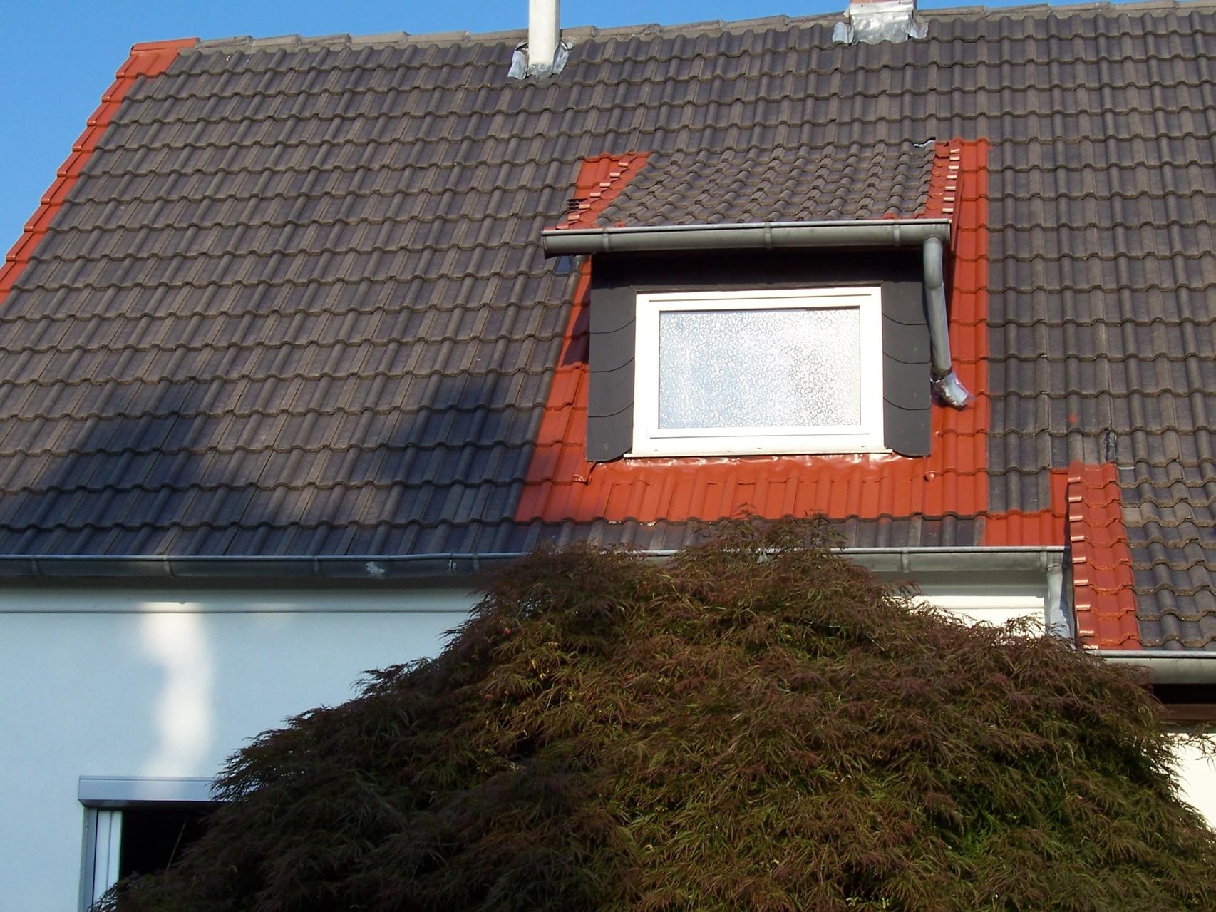Dachreinigung Meisel Dachbeschichtung Braunschweig
