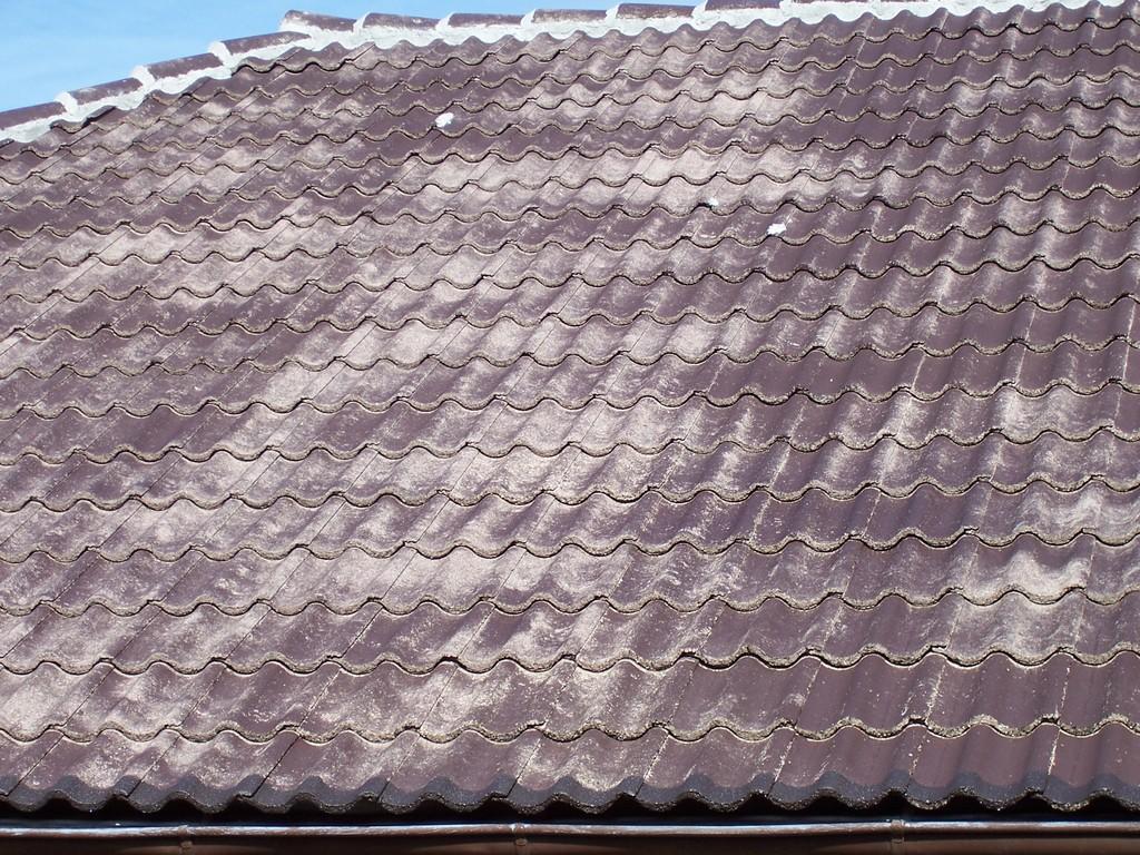 Dachreinigung Meisel Dachbeschichtung Seesen