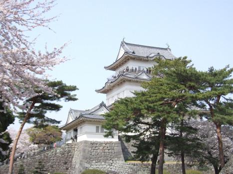 小田原城天守閣3