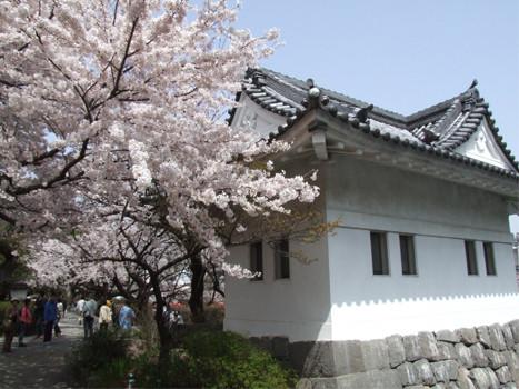小田原城隅櫓