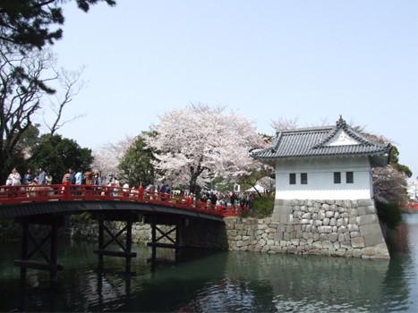 小田原城堀1