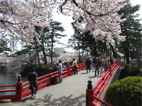 小田原城橋