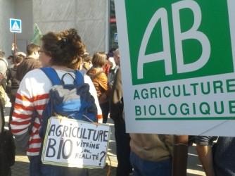 """""""Agriculture bio : vitrine ou réalité ?"""""""